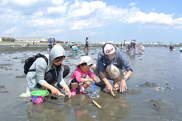 2017年 潮干狩り:ふなばし三番瀬海浜公園