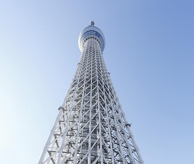 東京の新名所! 人々が集い、心を寄せ合う大きな木「東京スカイツリー」