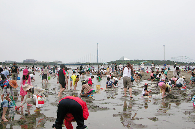 自然のアサリで潮干狩りを楽しめる横浜の潮干狩場「横浜 海の公園」
