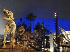 恐竜王国福井の大人気恐竜博物館!福井県立恐竜博物館