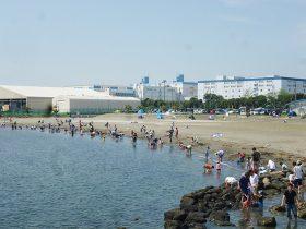 さまざまなレジャーが楽しめる「東扇島東公園 かわさきの浜」