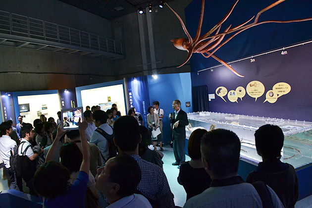 """子どもにもおすすめの展覧会、ダイオウイカなど、""""深海""""という極限状態で生息する生物の謎に迫る!『特別展「深海」- 挑戦の歩みと驚異の生きものたち』に行ってきた!"""