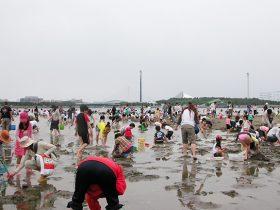 20080504_report_yokohama_shiohigari_01