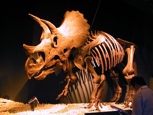 今までの常識が覆る! 半世紀の恐竜研究の成果を紹介!子供と行きたい「恐竜博2011」に行ってきた!