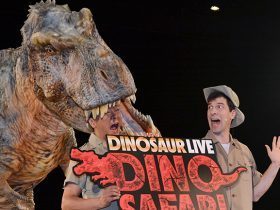20170425_report_DINO_SAFARI_03