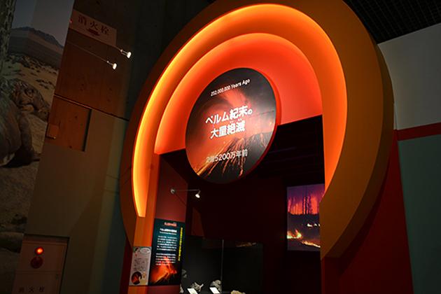 新垣結衣さんが登場! 2015年7月7日(火)から開催!子供も楽しめる特別展「生命大躍進 脊椎動物のたどった道」に行ってきた!