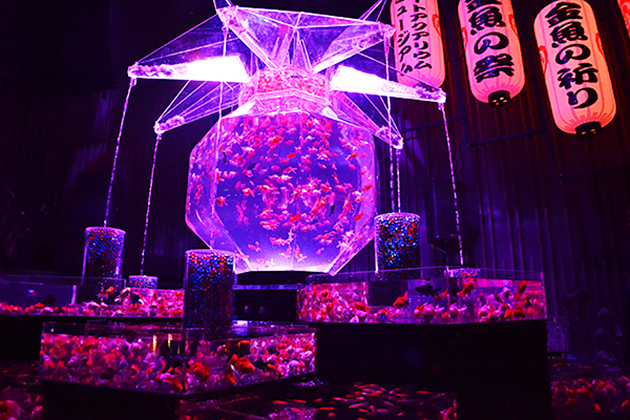 アートアクアリウム誕生10周年、圧倒的な豪華さで幻想的な非日常空間「アートアクアリウム2016 〜江戸・金魚の涼〜&ナイトアクアリウム」に行ってきた!
