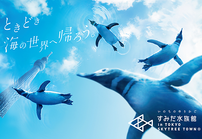 子供と一緒に楽しめる! 東京スカイツリーにある水族館「すみだ水族館」