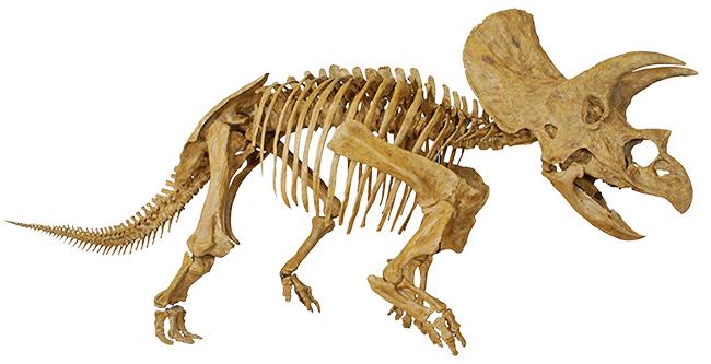 子どもたち大興奮の恐竜イベント!ヨコハマ恐竜展2017 〜動く!ほえる!恐竜の森〜2017年7月15日(土)〜9月3日(日)までパシフィコ横浜で開催!