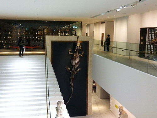 子供たちが大好きな動物骨格の無料角物館も!JR東京駅前、「JPタワー」内にオープンする商業施設「KITTE(キッテ)」初公開!