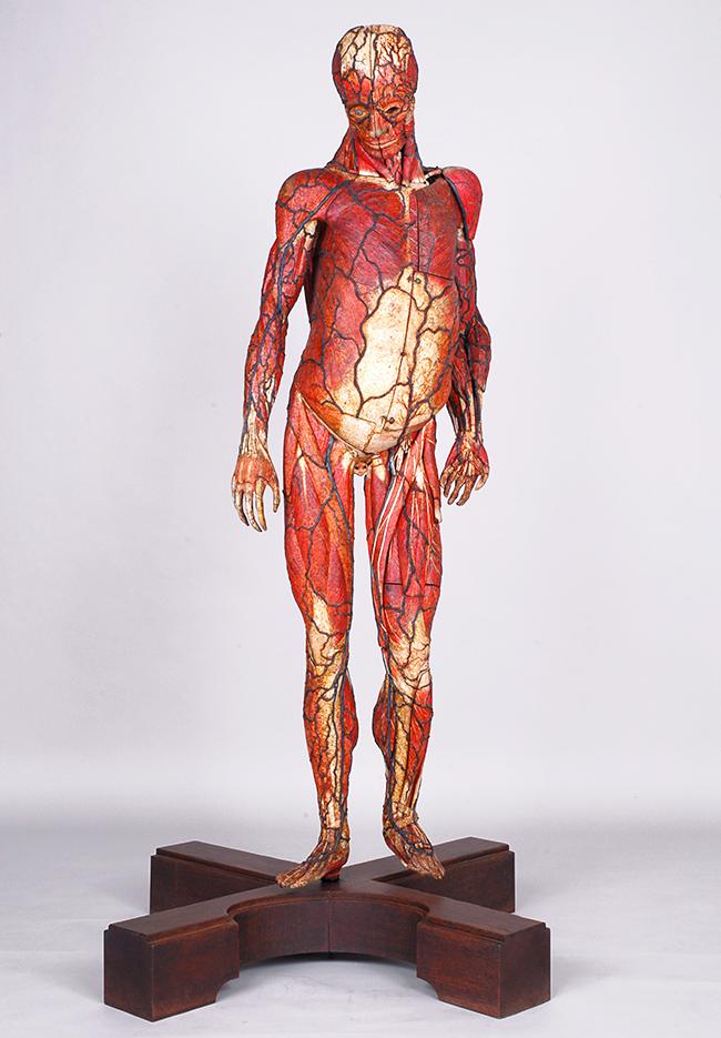 子供と一緒に人体の謎を学ぼう!人類はどのように人体を理解してきたか。特別展「人体-神秘への挑戦-」が2018年3月13日(火)から国立科学博物館で開催!