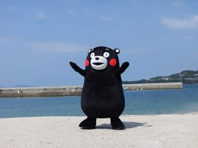 20171213_event_kumamon_02