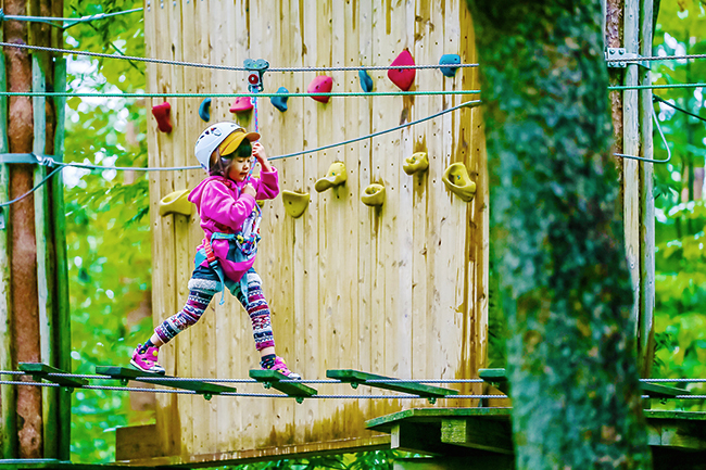 子供が木の上で大冒険を楽しめる!森林と共生したアドベンチャー施設「フォレストアドベンチャー・千葉」が2018年3月17日(土)オープン!