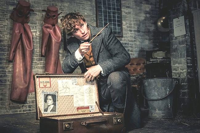 子供も大好き!ハリー・ポッター魔法シリーズ「ファンタビ」最新作『ファンタスティック・ビーストと黒い魔法使いの誕生』が2018年11月23日(金・祝)全国ロードショー!