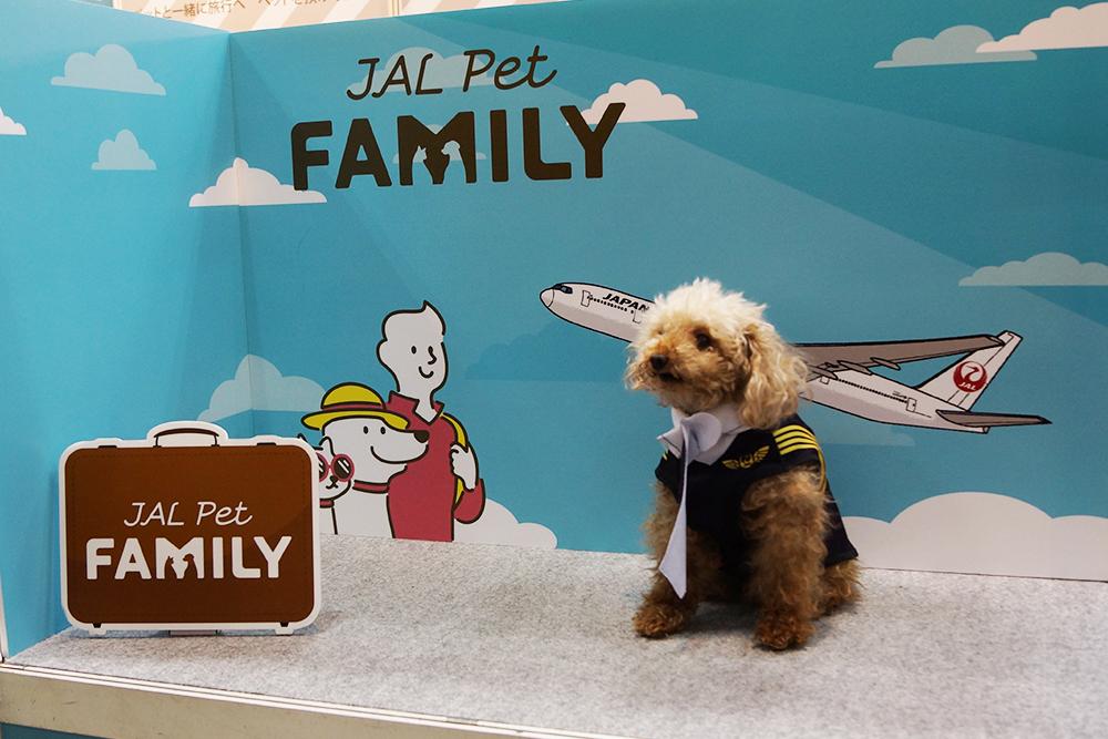 ペットも子供も一緒に楽しめる、国内最大級のペットイベント!「第8回 Interpets(インターペット)〜人とペットの豊かな暮らしフェア〜」に行ってきた!