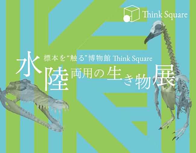 子供の知的好奇心をくすずる標本に触れる博物館「Think Square(シンクスクエア)」で2018年5月7日(月)〜13日(日)、ワニやペンギンなどの海・川と陸の双方を生活圏にする生き物の標本を展示する「水陸両用の生き物展」を開催!