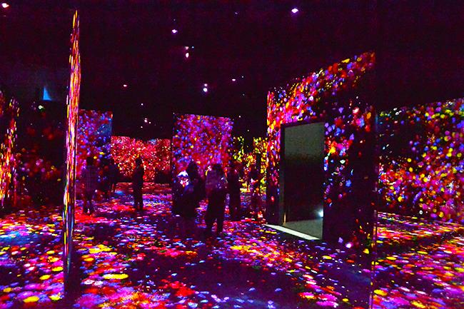 チームラボは2018年6月21日(木)お台場にデジタルアートミュージアム「チームラボボーダレス」を、2018年7月7日(土)には新豊洲に「チームラボ プラネッツ TOKYO DMM.com」をオープン!それぞれのコンセプトや違いついてチームラボ代表の猪子寿之さんにお伺いしました。