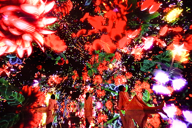 2018年7月7日(土)の七夕、新豊洲にオープンするアートへの超巨大没入空間「チームラボ プラネッツ TOKYO DMM.com」のオープニングセレモニー & 新CM制作発表会が開催!北野武さん、山下智久さん、ローラさんが登場し、子供と一緒に楽しめる!