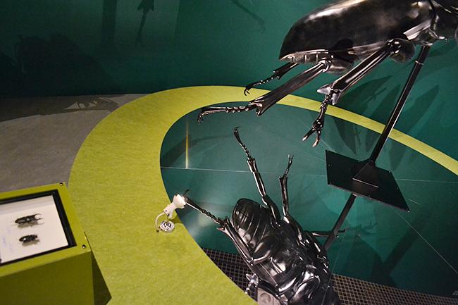 国立科学博物館 初の昆虫をテーマとした大規模展覧会、特別展「昆虫」が2018年7月13日(金)から開催!特別展「昆虫」に行ってきました!昆虫の多様性、能力、魅力がよくわかるおすすめの昆虫展。この夏休み、子供たちはもちろん昆虫マニアにもおすすめ!