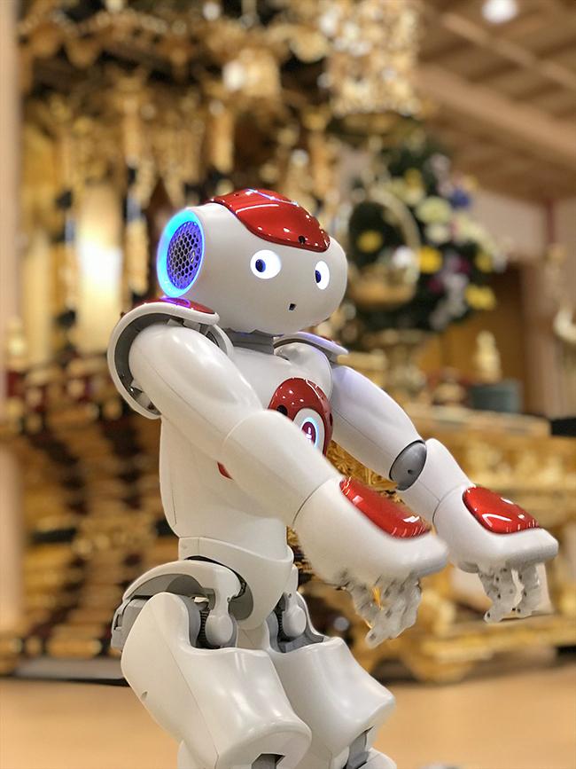"""涼しいお寺の本堂で、子どもも大人も楽しめる夏休み企画2本立てイベントを2018年8月26日(日)に町屋光明寺で開催!色と光の """"プロジェクションマッピング法話 ~王子様の家出~""""、ロボットとあそぼー! おしゃべりロボットNAOがお寺にやってきた!"""