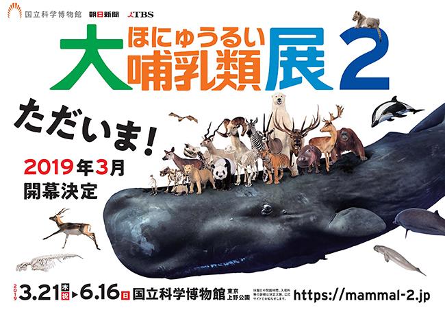 2019年3月21日(木・祝)〜6月16日(日)まで、国立科学博物館(東京・上野公園)で特別展「大哺乳類展2」が開催! 大好評を博した特別展「大哺乳類展 陸のなかまたち/海のなかまたち」から9年、哺乳類たちが上野に帰ってきます!