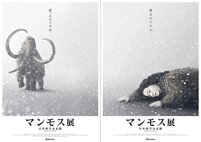 """子供と一緒に見て欲しい!永久凍土で発掘されたマンモスの冷凍標本が """"世界初"""" の展示となる企画展「マンモス展」が、2019年6月7日(金)〜11月4日(月・振)まで日本科学未来館(東京・お台場)で開催!それを記念して企画展「マンモス展」のご招待券をプレゼント!"""