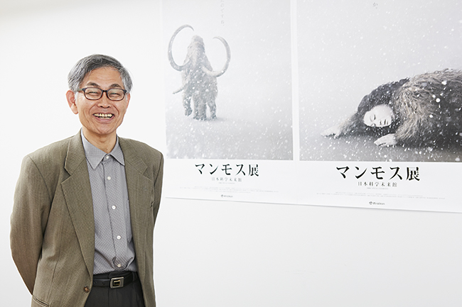 """From June 7 (Fri) to November 4 (Mon, Taki), 2019, the """"Mammos Exhibition"""" will be held at the Museum of Emerging Science and Innovation! The world premiere of frozen specimens of a large number of newly discovered archaeological animals including """"Yukagill mammoth"""" which was exhibited at the 2005 World Exposition """"Aichi Earth Expo"""" and was enthusiastic 7 million people! We talked with Mr. Yoichi Kondo, director of Lake Nojiri Naumanzou Museum, who oversaw paleontological biology about the highlights of the """"Mammoth Exhibition"""", the cause of the mammoth extinction, and the resurgence of the mammoth! """"Mammoth exhibition"""" is an exhibition that you want to see together with your children and discuss them in various ways!"""