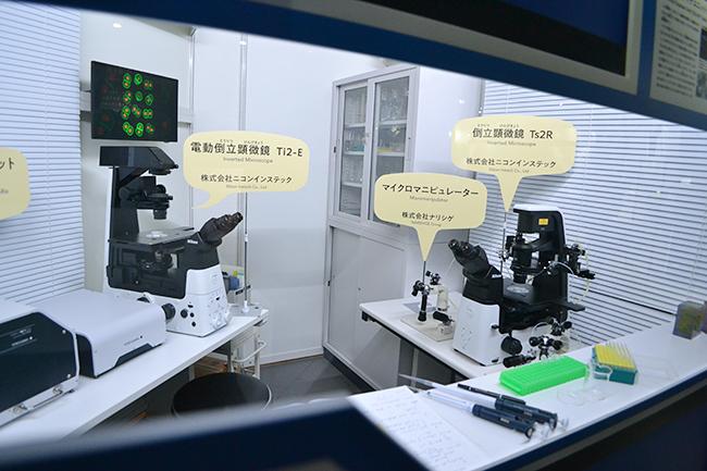 2019年6月7日(金)から日本科学未来館で企画展「マンモス展」-その『生命』は蘇るのか- が開催! 前日に行なわれたプレス内覧会に行ってきました!マンモスをはじめ近年発掘された古代仔ウマなど世界初公開の古生物の冷凍標本が展示、その生々しさには驚きます!近畿大学の最先端生命科学による「マンモス復活プロジェクト」も合成生物学の方向へ!マンモス絶滅の原因やマンモス復活についてよくわかる展覧会です。夏休みの自由研究にも最適。