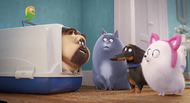 子供たちに大人気!『怪盗グルー』シリーズ、『SING/シング』を生み出したイルミネーション・エンターテインメントの大人気シリーズ、飼い主が留守の間ペットたちは何をしているのだろうという誰もが考えるペットたちの裏側の日常をユーモラスに描く物語と、愛くるしいペットのキャラクターが話題となり大ヒットを記録した『ペット』。その待望の続編『ペット2』が2019年7月26日(金)に全国公開!『ペット』の続編『ペット2』映画紹介!
