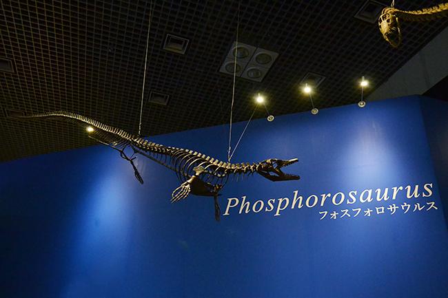 2019年7月13日(土)から国立科学博物館で特別展「恐竜博2019」開催!恐竜研究50年の歴史を重要標本で辿る特別展「恐竜博2019」に行ってきた!1969年発見の恐ろしいツメ「デイノニクス」から始まった恐竜研究50年の変遷を重要標本をたどるほか、謎の恐竜「デイノケイルス」、北海道で発見された「むかわ竜」を世界初公開!恐竜好きの子供たち大興奮の「恐竜博2019」、「恐竜博2019」は子供と一緒にお出かけするのにオススメ!