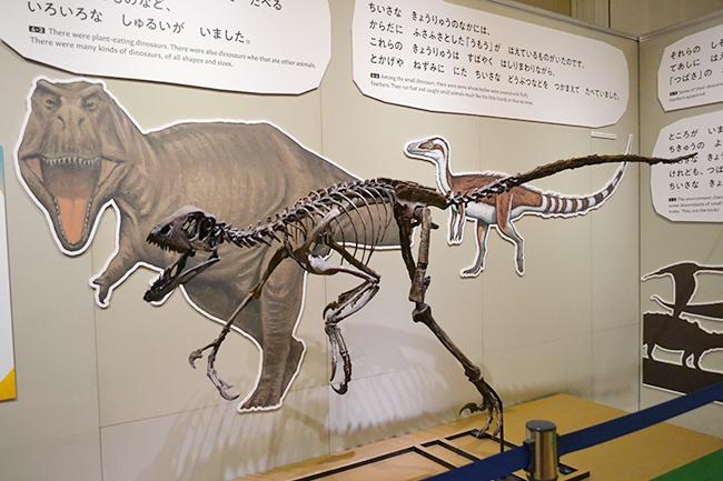 """魚類からヒトに進化するまでの約5億年間の """"生命の進化"""" の主な出来事を、絵本を通して、子供たちにもわかりやすく解説する企画展「絵本でめぐる生命の旅」が、2019年12月17日(火)〜2020年3月1日(日)まで国立科学博物館で開催!"""