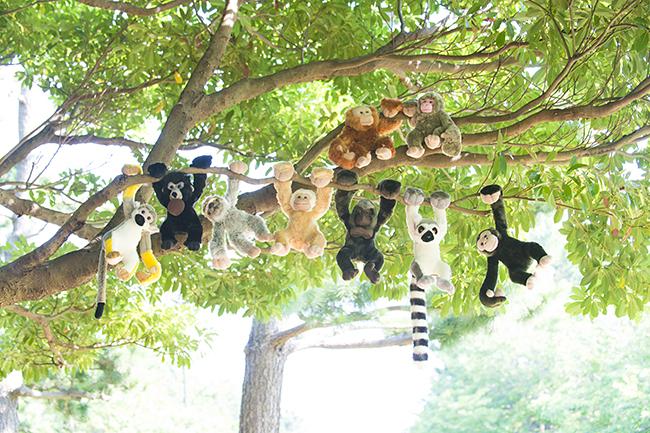 300匹の動物のぬいぐるみが子供たちを迎えてくれる動物園「SHIBUYA ZOO スペースJ ~「連れて帰れる」300匹のぬいぐるみ動物園~」が、2020年1月1日(水、祝)〜13日(月・祝)まで東京・渋谷のエンターテイメントスペース「スペースJ」で開催!