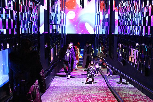 すみだ水族館は2020年2月28日(金)〜4月27日(月)まで、クラゲと一緒にお花見体験が楽しめるインタラクティブアート「桜とクラゲ」を開催!8つのクラゲ水槽や壁面、床に、桜の花びらが舞い散る様子や都会の桜景色をイメージした映像を投影、幻想的なお花見空間を楽しめる体感型展示です。