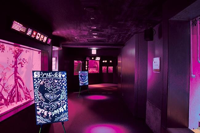 """サンシャイン水族館では2019年に実施して話題になった生き物の""""性""""に関する特別展示「性いっぱい展」をさらにパワーアップ、第2弾として夜のサンシャイン水族館「もっと♡性いっぱい展」を2020年9月12日(土)〜11月5日(木)の夜間特別営業に開催!"""