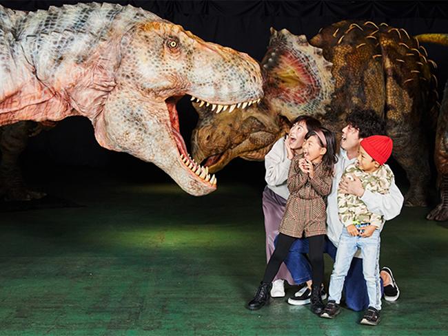 """リアルな動きで恐竜を体感する恐竜ライブエンターテインメント「ディノアライブ」。そのライブに登場する恐竜たちの""""アートとしての側面""""にスポットを当てた新しいスタイルの展覧会「ディノアライブの恐竜たち展」が、2020年12月11日(金)~30日(水)新宿住友ビル三角広場で初開催!"""