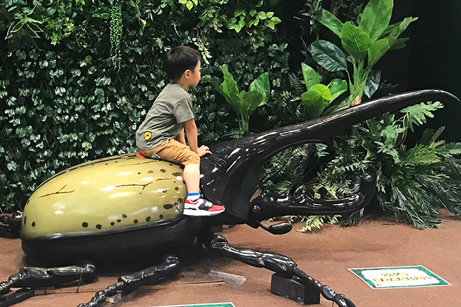 子どもに大人気の「かいけつゾロリ」が昆虫展とコラボレーション!「かいけつゾロリ わくわく昆虫展!」が2021年7月17日(土)〜8月29日(日)まで横浜赤レンガ倉庫で開催!この夏、ゾロリたちと一緒に昆虫の世界を冒険!黄金のクワガタを探しに行こう!