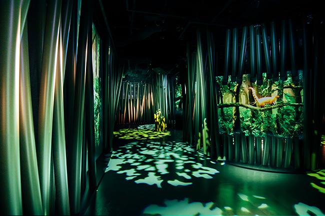 図鑑の世界に入り込むような新感覚の体験ができるデジタルミュージアム『ずかんミュージアム(ZUKAN MUSEUM GINZA)powered by 小学館の図鑑NEO』が2021年7月16日(金)から東京・銀座の東急プラザ銀座に開業!ずかんミュージアムに行ってきた!
