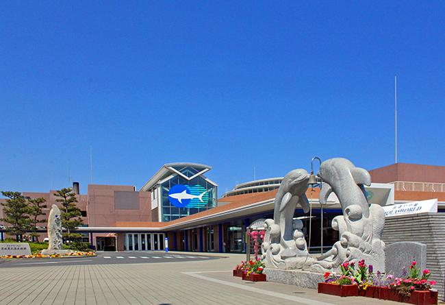 2022年に開館20周年を迎えるアクアワールド茨城県大洗水族館は、2021年12月11日(土)から2022年3月31日(木)まで、開館20周年記念事業として人気アニメ『ワンピース』とのイベント企画「ワンピース BIG WASH島の大冒険! IN アクアワールド・大洗」を開催!